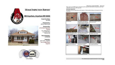 A-Pro Home Inspection Services will give you a full color professional report