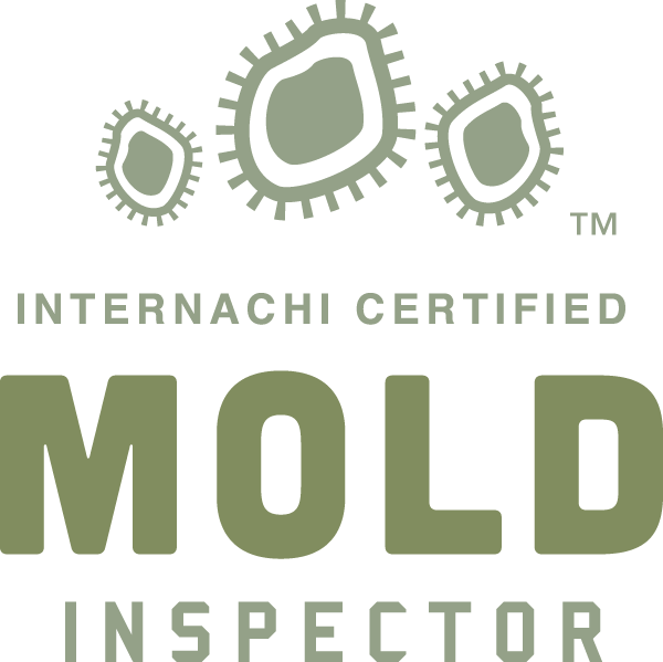Charleston mold inspection near me