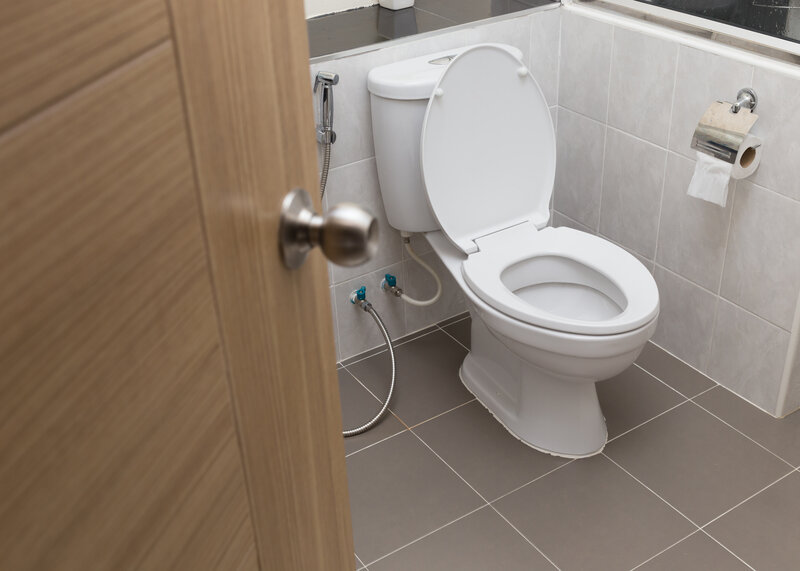 Toilet Inspection Columbia